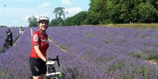 The Famous Lavender Fields of Banstead!