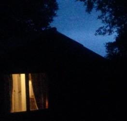 night (592 x 563)